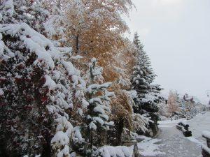 First snowfall in resort 6 Nov 2016